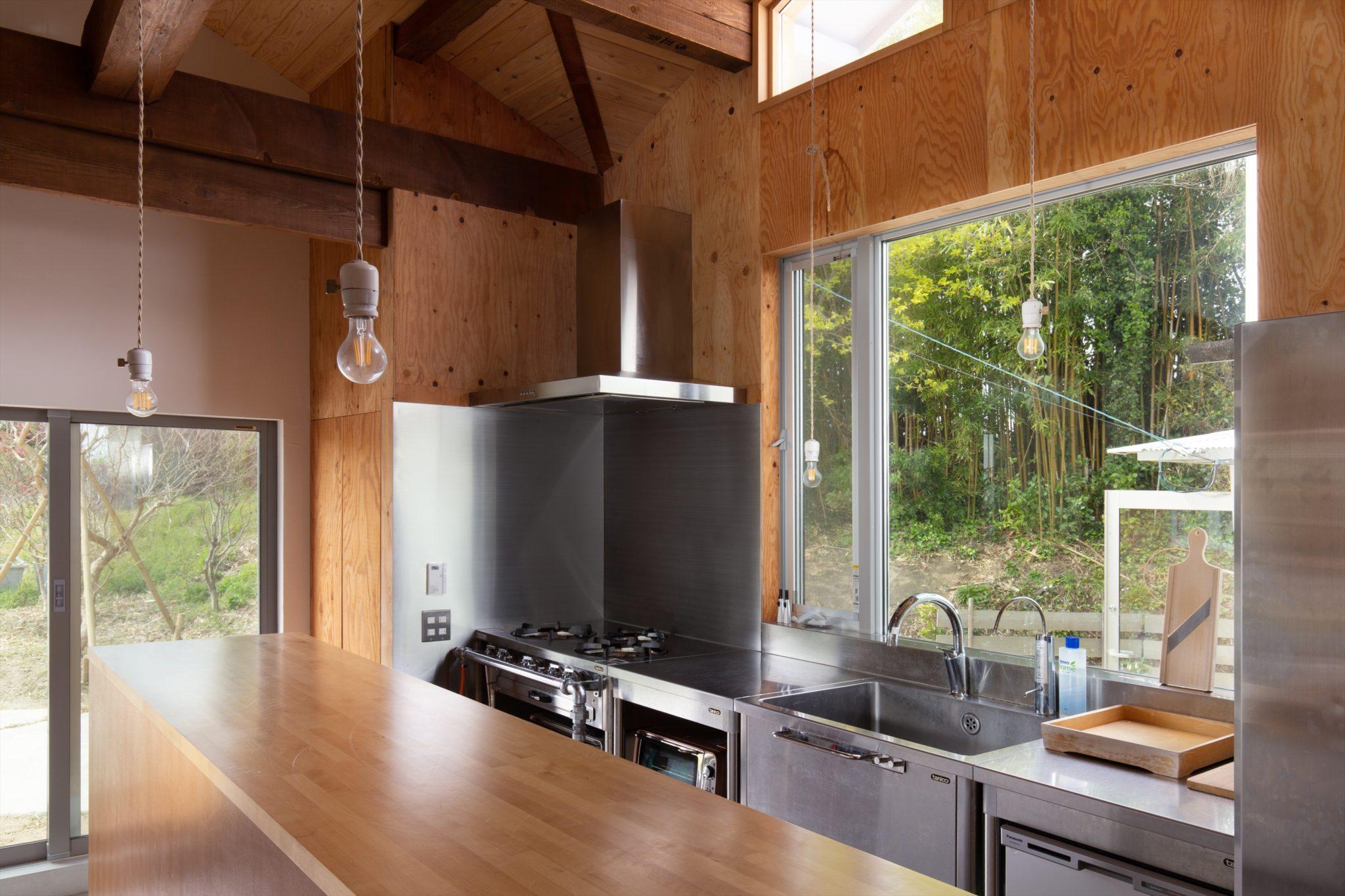 業務用で構成したキッチン。外には緑。