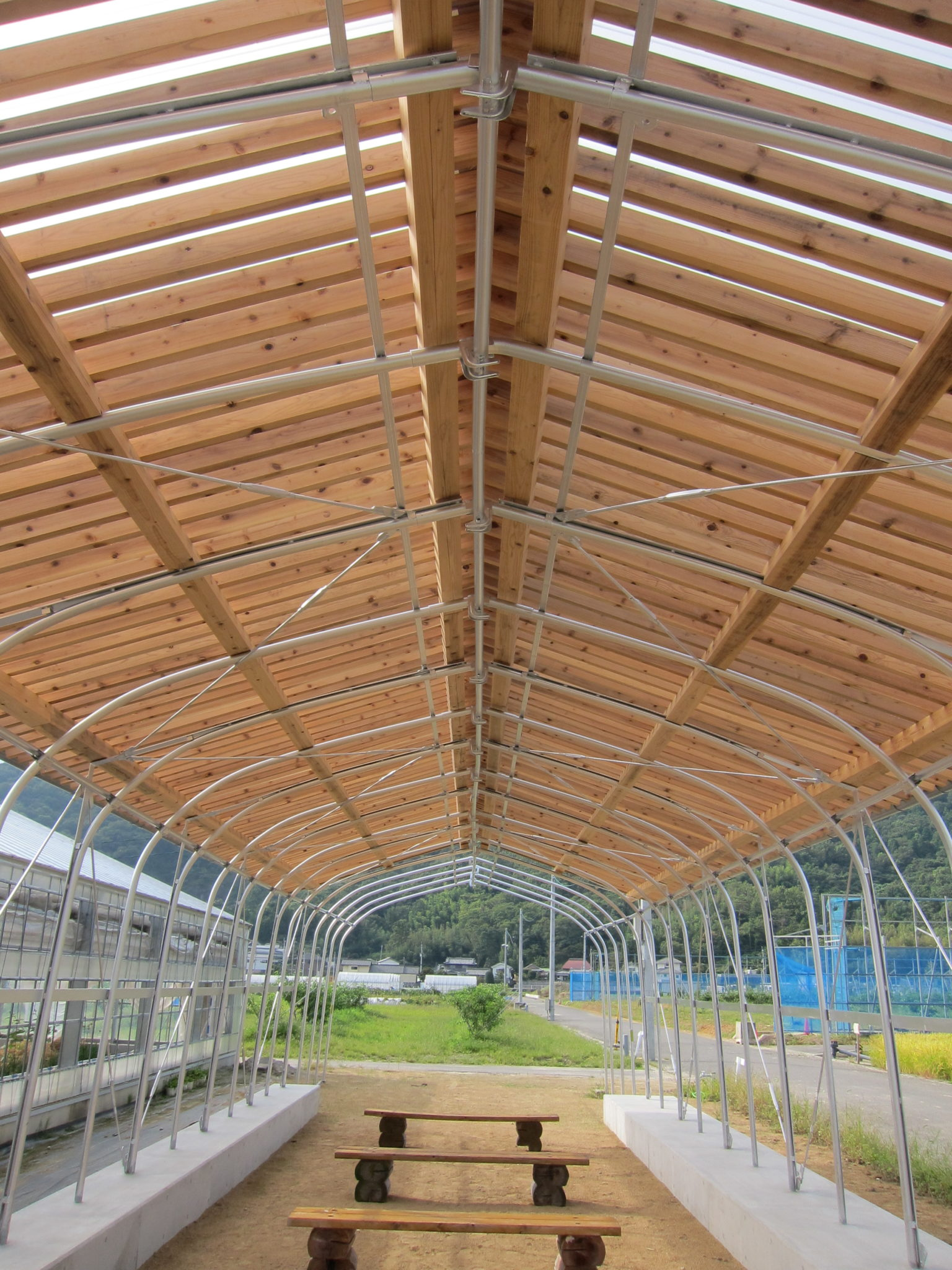徳島すぎの母屋+垂木+ポリカ波板